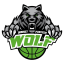Concessionaria Guidi Car - Sponsor Wolf Basket